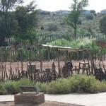 Pioneer Garden