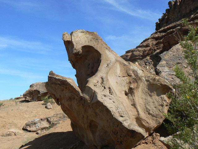 Dinosaur Head Rock 2